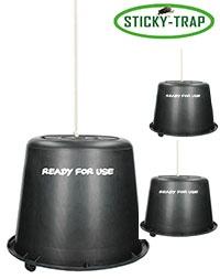 Sticky trap Past na ovády 1,5l s třemi kyblíky připravený k aplikaci