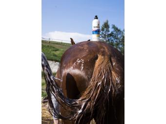 Absorbine ShowSheen 2v1 - Šampon a Kondicionér hluboce čistí a revitalizuje srst koně