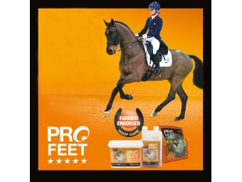 NAF ProFeet - řada produktů pro zdravá kopyta, která vyhoví těm nejnáročnějším požadavkům