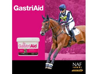GastriAid