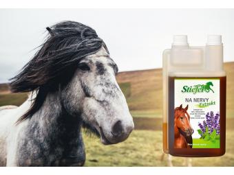 Schází Vašemu koni pevné nervy?
