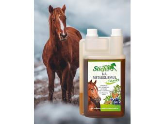 Trápí Vašeho koně nadváha?